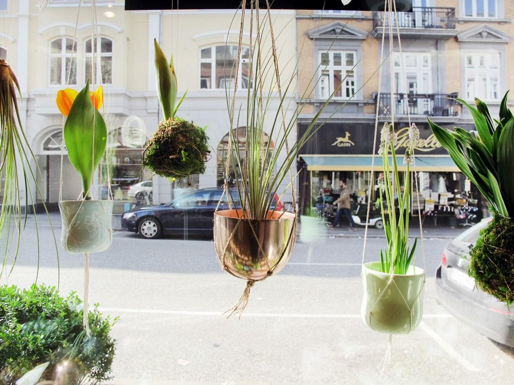 hænge planter og planteplaneter i vinduet